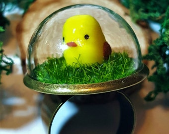 Baby Bird Ring - Moss Terrarium, Fairy Garden, Forest Ring Glass Dome.