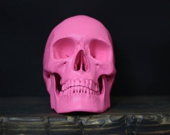 Fluore - Hot Pink Full Scale Life Size Realistic Faux Human Skull Replica with Removable Jaw / Art / Ornament / Home Decor