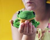 Ernest The Frog - Amigurumi Pattern