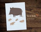 Wildschwein, Karte A6