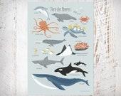 Meerestiere, Poster A3