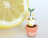 Teeny potted sprouting magic bean sculpture - pink pot