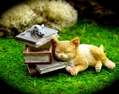 Miniature Cat with books and hidden compartment ~ Fairy Garden Supplies ~ Miniature Garden Supplies ~ book top lifts off with mouse