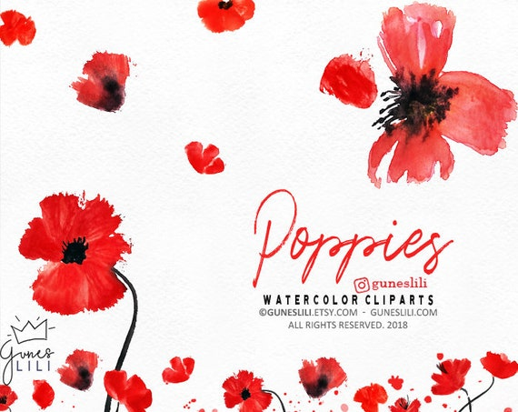 Watercolor poppy clipart wreath clipart red floral clipart poppy il570xn mightylinksfo