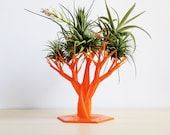 Air Plant Tree - Air Plant Holder, Air Plant Decor, Halloween Decoration, Tillandsia Tree, Indoor Garden, Air Plant Stand, Miniature Tree