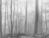 Panoramic Landscape Art, Foggy Landscape, Foggy Forest Photograph, Smoky Mountain Photography, Monochrome, Panoramic Canvas