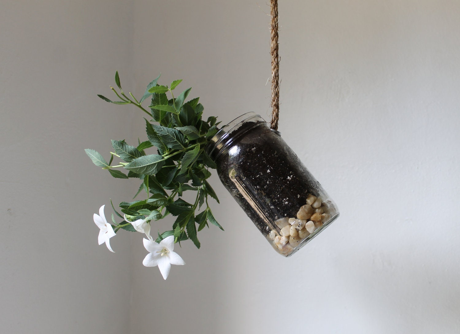 Hanging Mason Jar Planter with drainage - Upcycled home & garden decor - Quart Sized Ball Jar herb and flower planter - BootsNGus design - BootsNGus