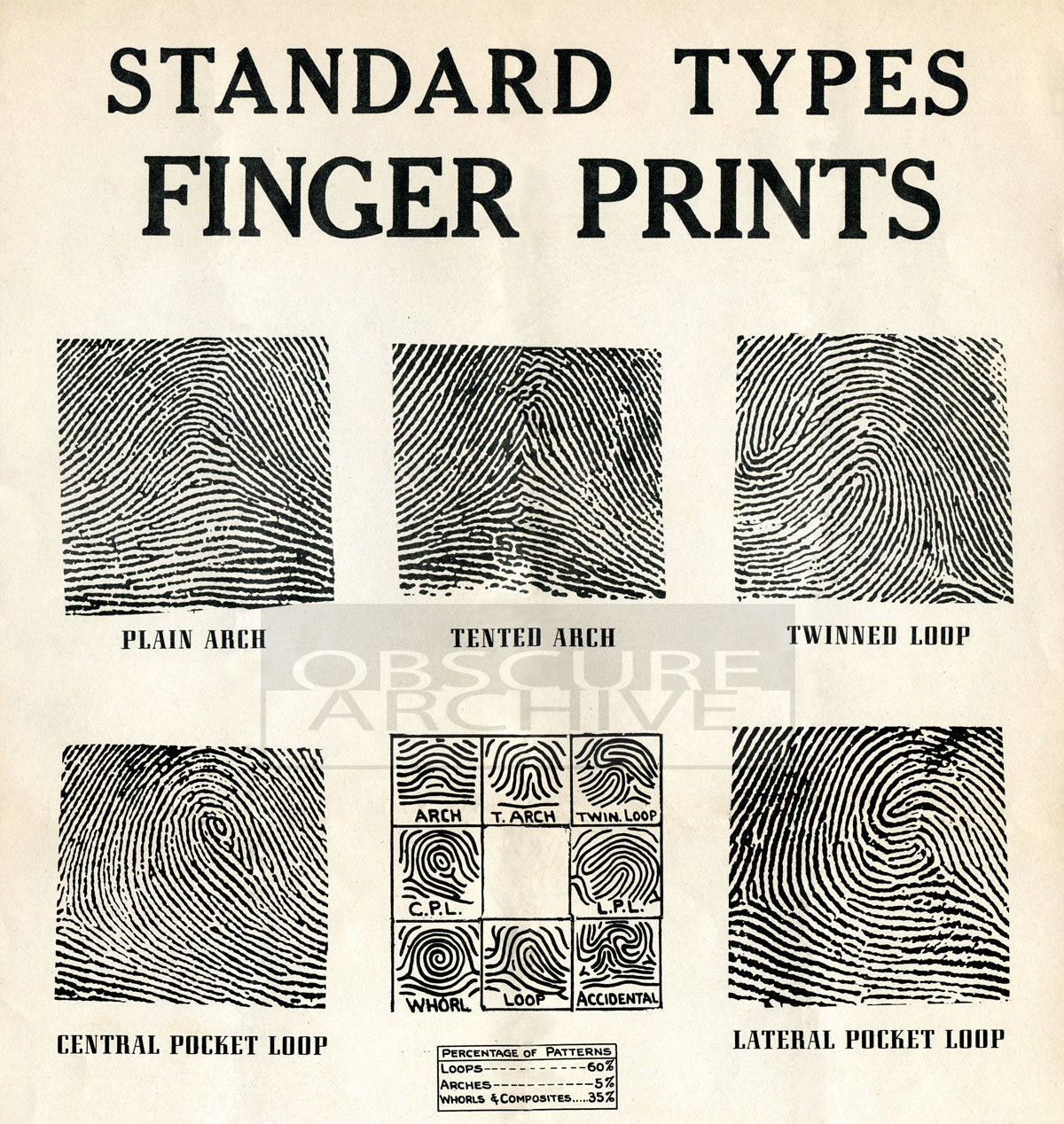 fingerprint identification thesis Essays - largest database of quality sample essays and research papers on research paper on dna fingerprinting automated fingerprint identification.