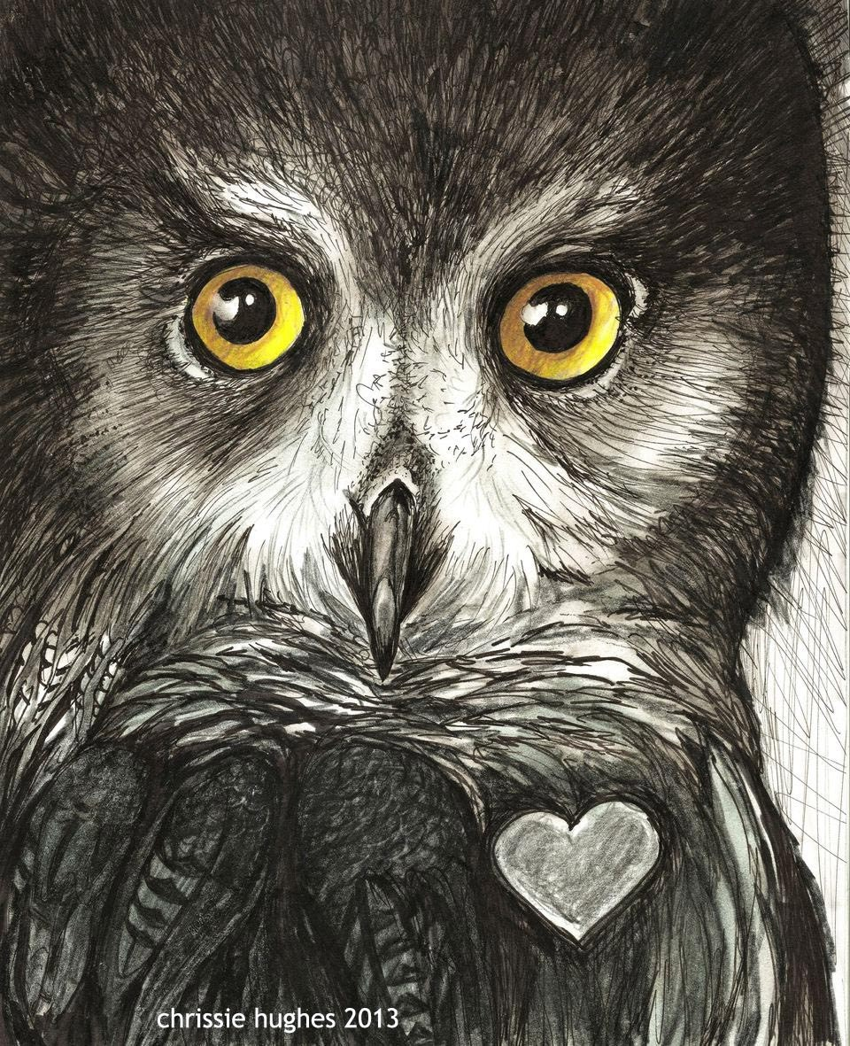 Owl Art / Original Framed Illustration/ Created by hand One of a kind / Ink 8x 10 Signed Maine Artist Chrissie Hues Hughes  free shipping - OldSewlVintage