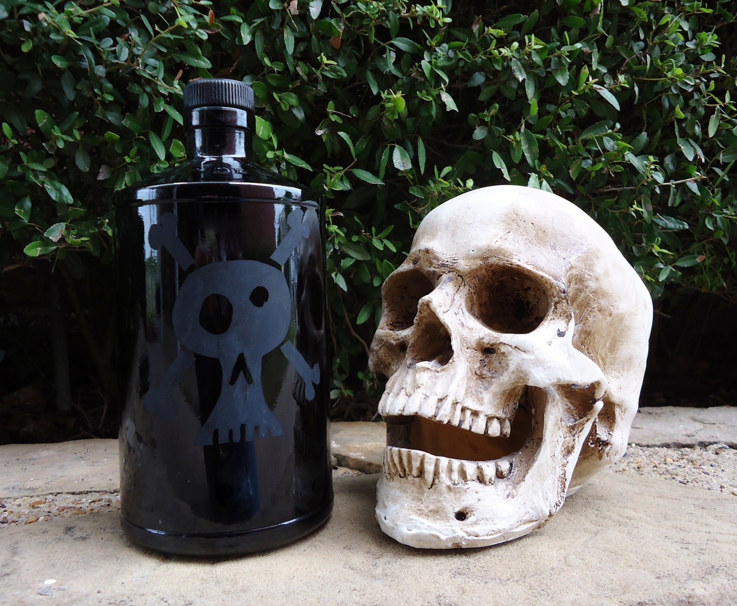 Skull and Crossbones Poison Bottle on Black Recycled Hendricks Gin Bottle