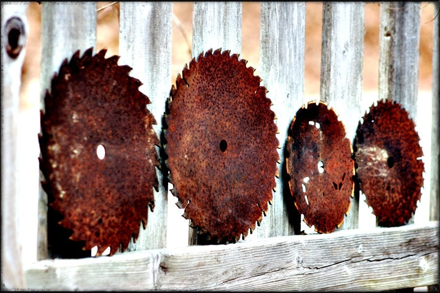photograph Metallic Photographic  Print - Saw Blades- 11x17 Fine Art gifts for woman men man - 630photo