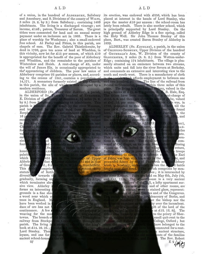 Black Labrador Bone on Nose Original Illustration Giclee Print Digital Art Animal Painting wall art wall decor Wall Hanging Digital Print