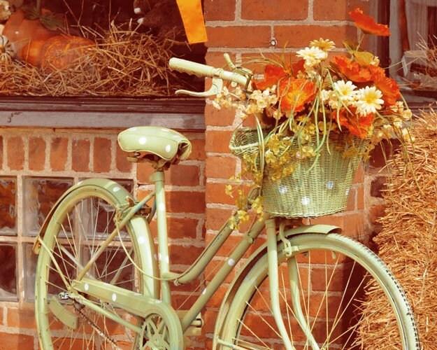 Фотография печати осень велосипедов 8x10 - старинный монетный двор велосипед стене художественной фотографии