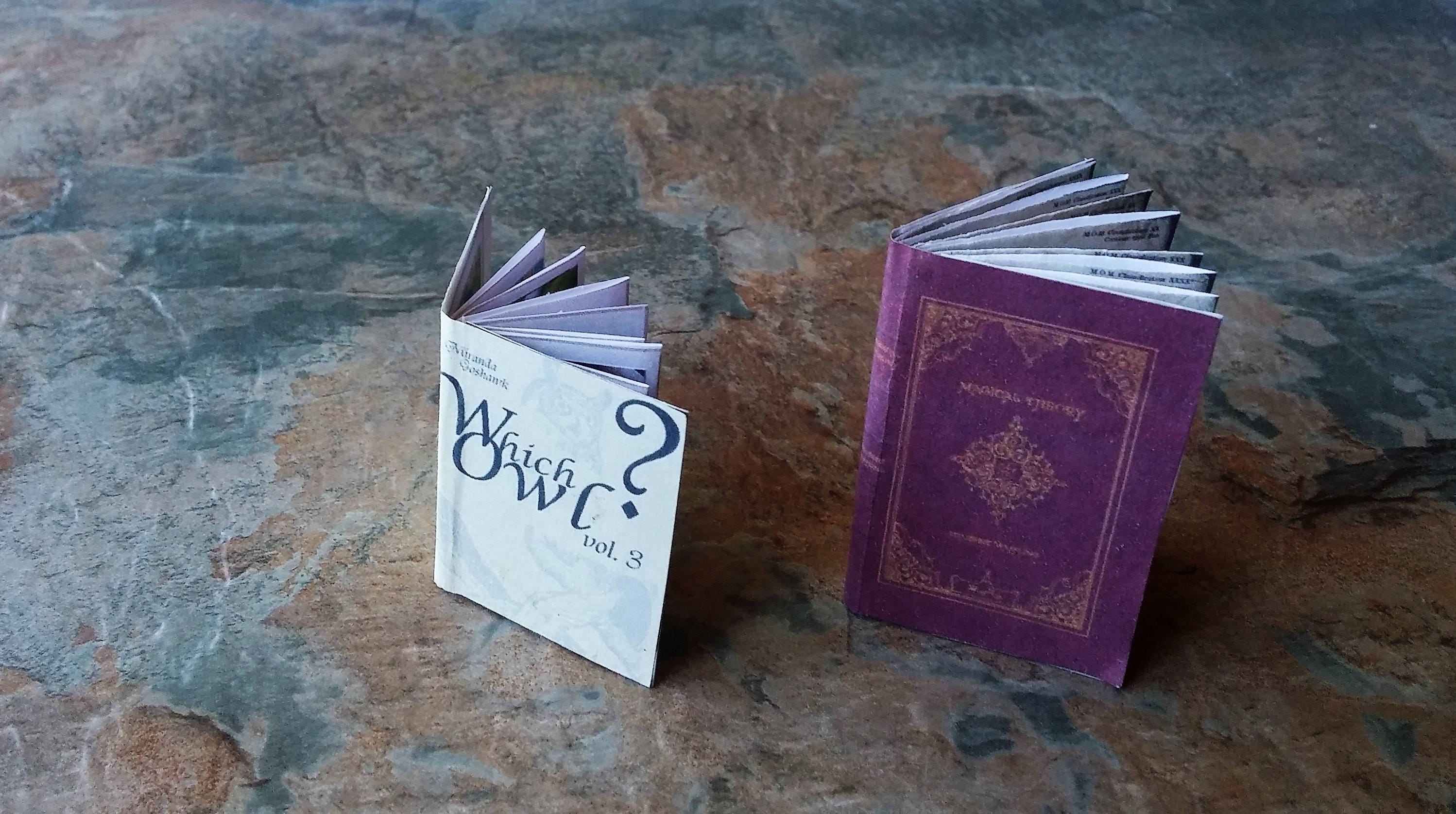 Harry Potter Dolls House Miniature Owl Book  Hogwarts Creatures Miniature Harry Potter BooksDolls AccessoriesWitchesWizardsOriginal