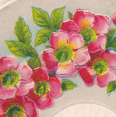 Antique Birthday Greetings Postcard Used Embossed Early 1900s (fpc274)
