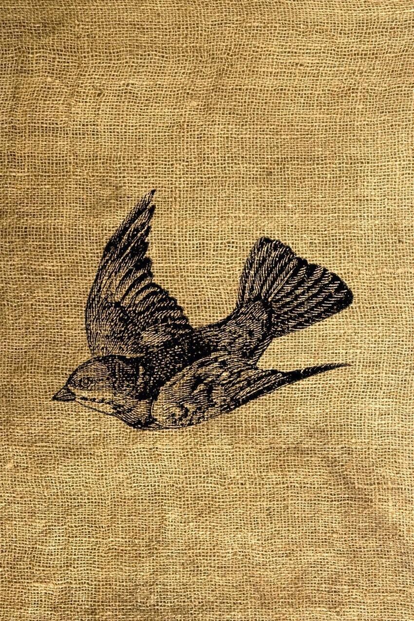 Flying bird illustration vintage - photo#3
