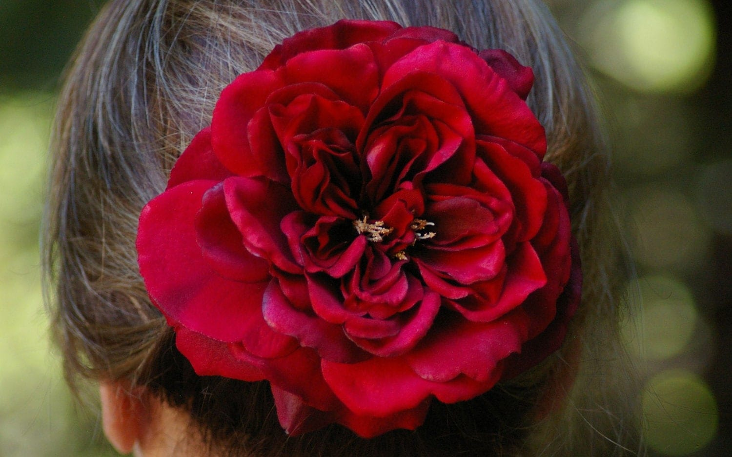 Real Touch Sophia Red Rose Hair Clip