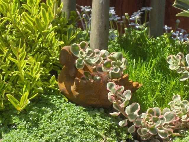 Miniature Swan Planter For Fairy Garden By Gardenflowers1 On Etsy