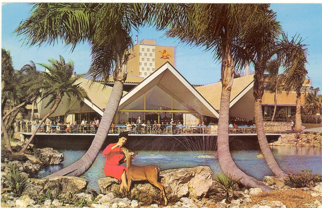 Tanganyika Tidal Wave @ Busch Gardens Tampa in Florida   Adrenalin ...