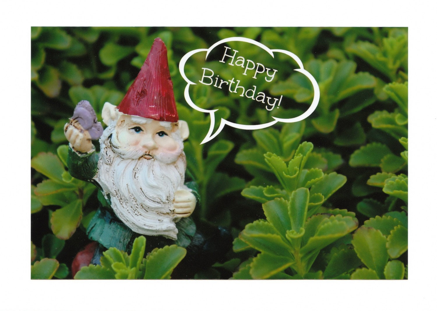 Garden Gnome Happy Birthday Photo Note Cards By Cardsbykaties