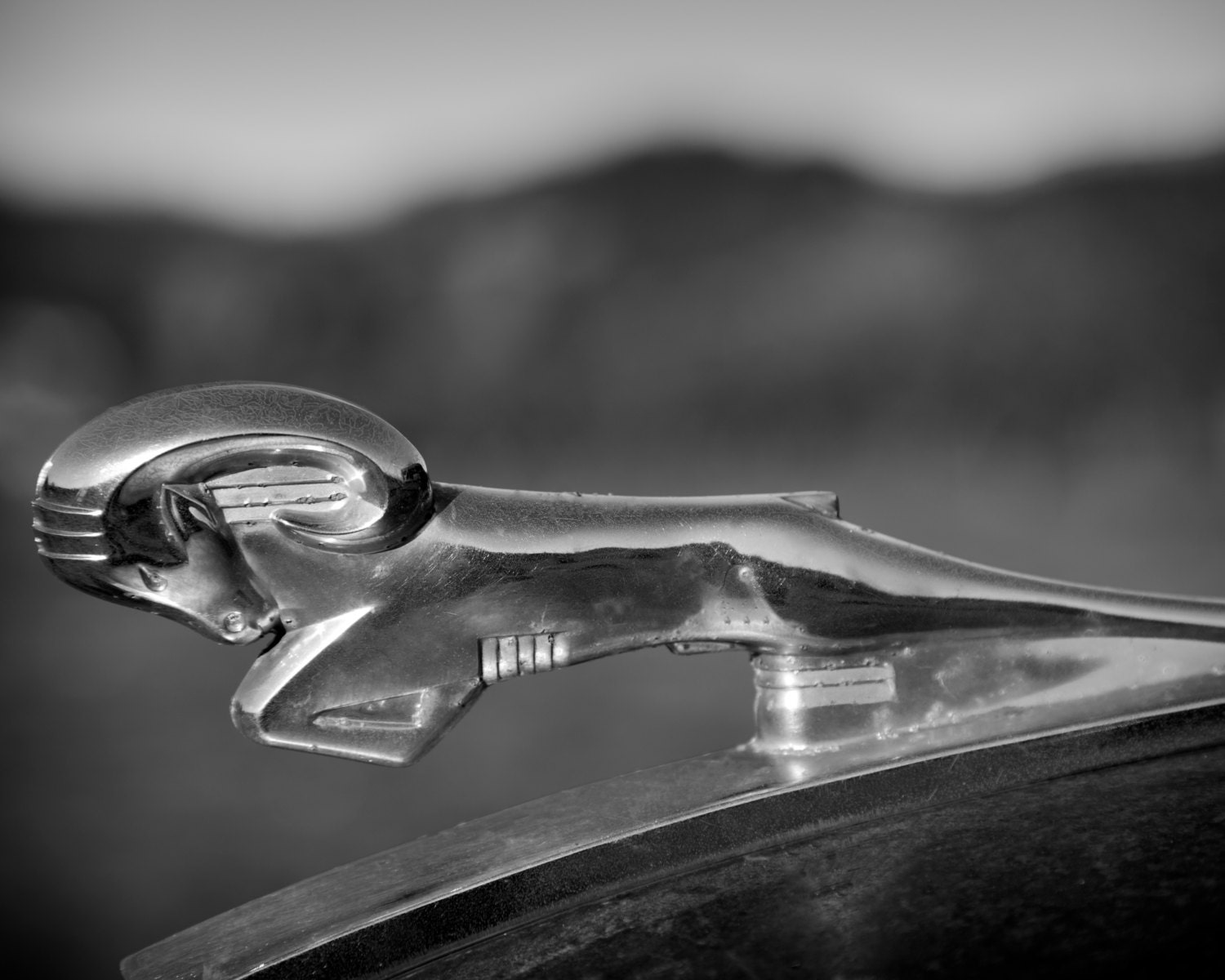 truck hood ornament classic car photography vintage dodge ram hood. Cars Review. Best American Auto & Cars Review