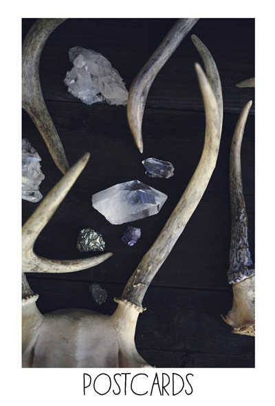Postcards - Single Card - Blank Cards - Stag and Stone - Antlers - Crystals - Amethyst - Fine Art Photography - AliciaBock