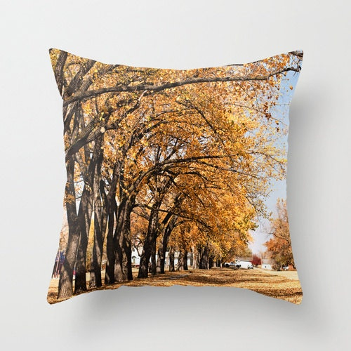 Decorative Pillows For Fall : Fall Pillow Autumn Throw Pillow Cover Topaz by CrystalGaylePhoto