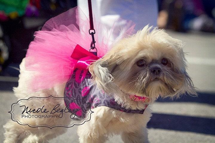 Поцелуи Туту Harness собак платье