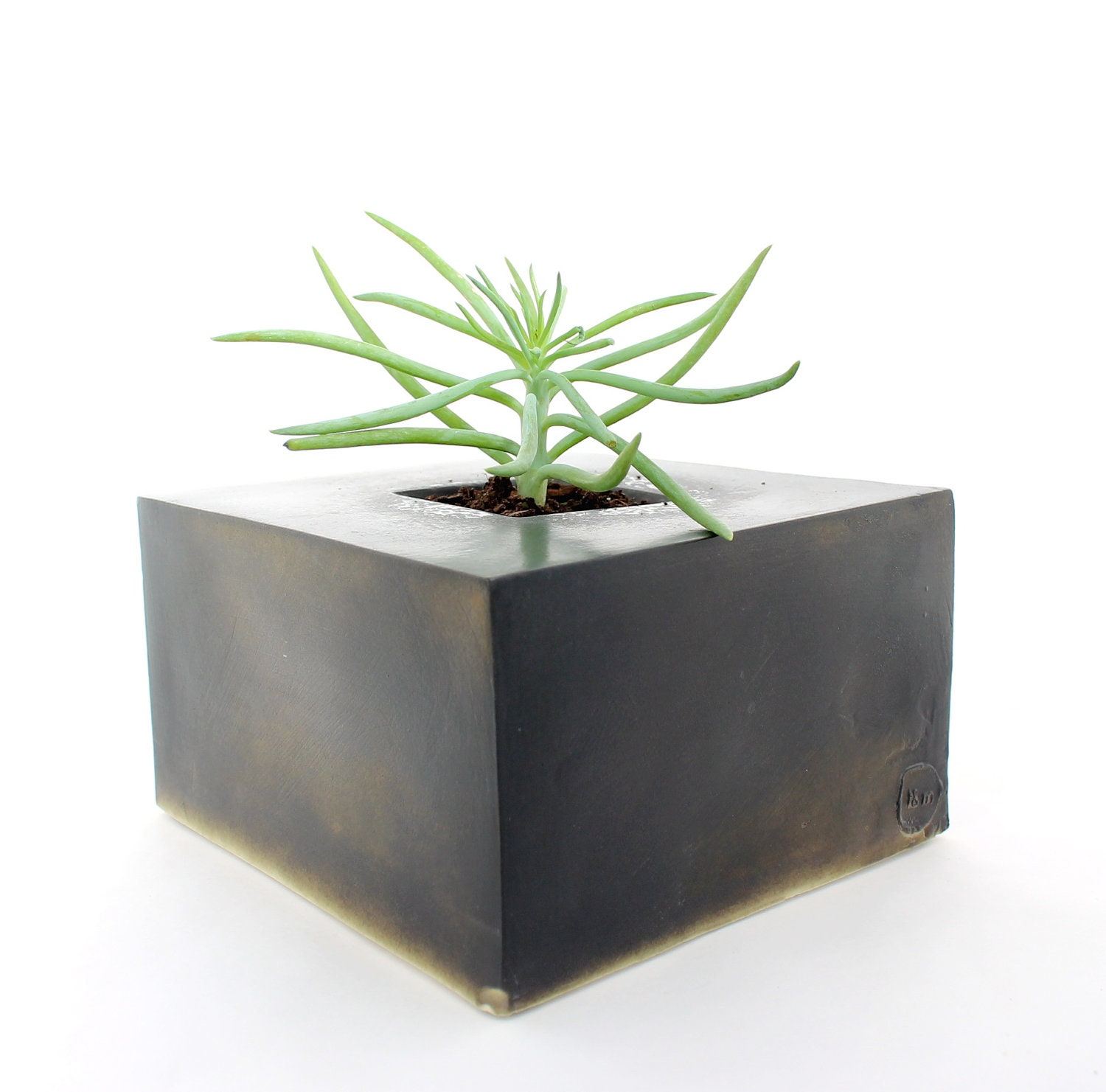 Copper Black Cube Planter - LandMstudio