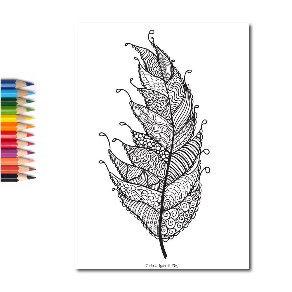 Feathers  Coloring Pages for Adults  JustColor