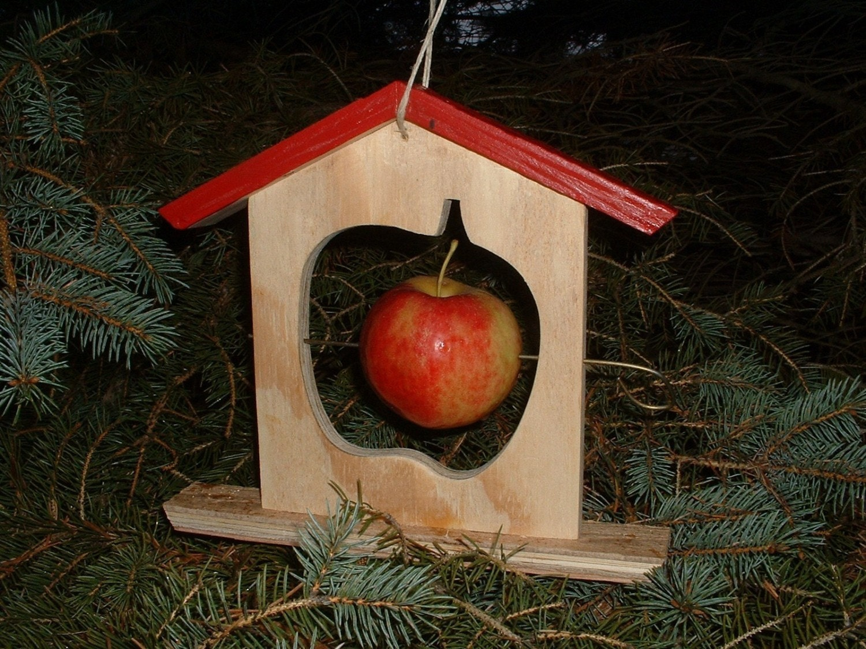 Handmade apple bird feeder wood wintertreat teacher gift for Unique homemade bird feeders