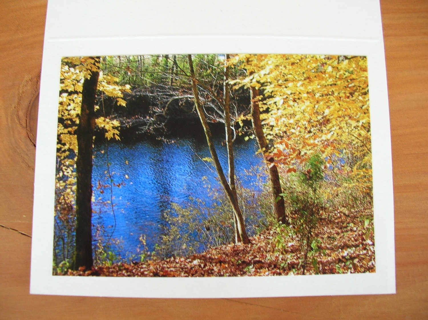 "Photo Note Cards  Set of 4  Series ""At the River"" Handmade LittlestSister - LittlestSister"