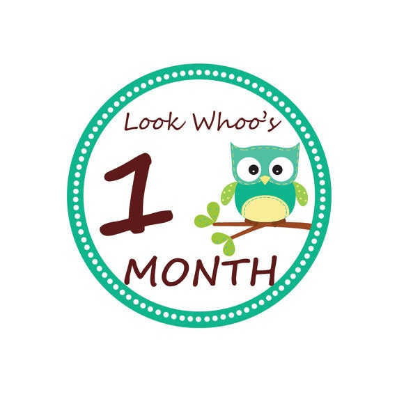 INSTANT DOWNLOAD Monthly Owl Tummy Tags - (DIY Printable Stickers ...