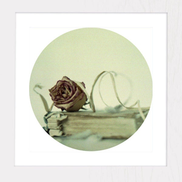 Shabby Chic Decor - Vintage Book and Rose - Bed Room Decor - Wall Art - Cottage Decor - Still Life 6x6 photography, pastel fall finds - GrainPixels