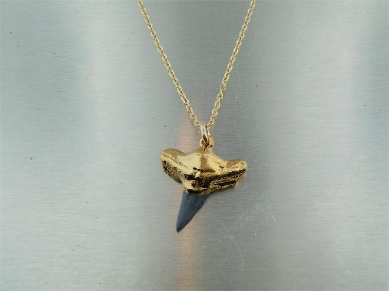 Shark Tooth Fossil Pendant - KCDbyKyleChan