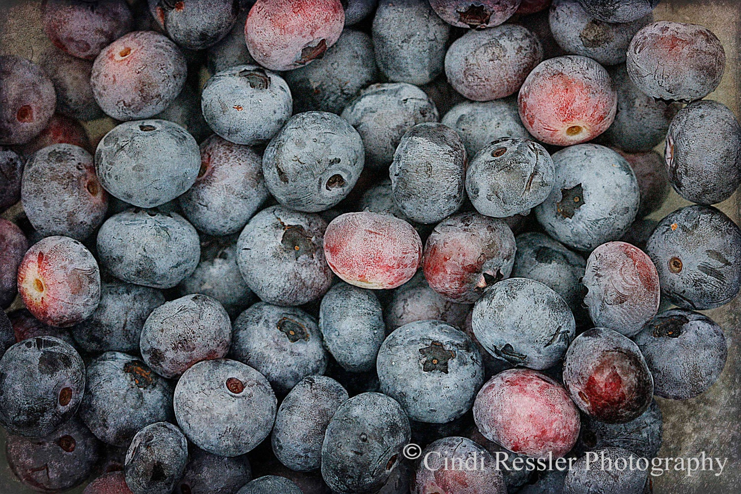 Blueberries 2, 5x7 Fine Art Photography, Food Photography - CindiRessler