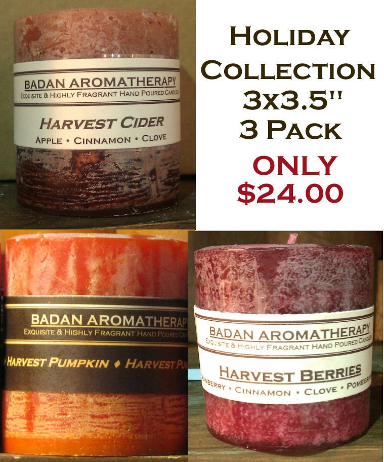 Apple Pomegranate Pumpkin Cinnamon & Clove Handmade Pillar Candle Collection 3x3.5 Set of 3