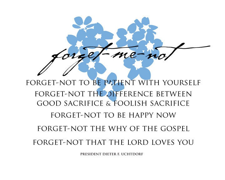 Forget-me-not - Photo Set