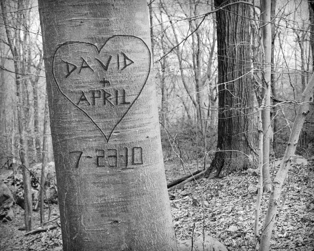 Personalized carved tree photograph love by pictureitpersonal