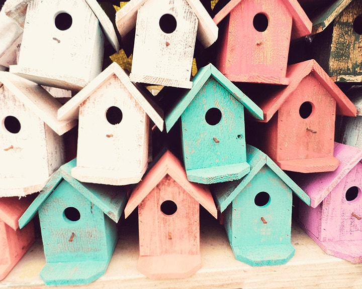 8x10, Pastel Photography, Pastel Decor, Birdhouse Photography - Bird Houses - Visualology