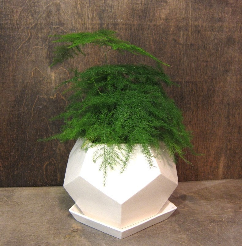 Geo planter Small - White - mgmy