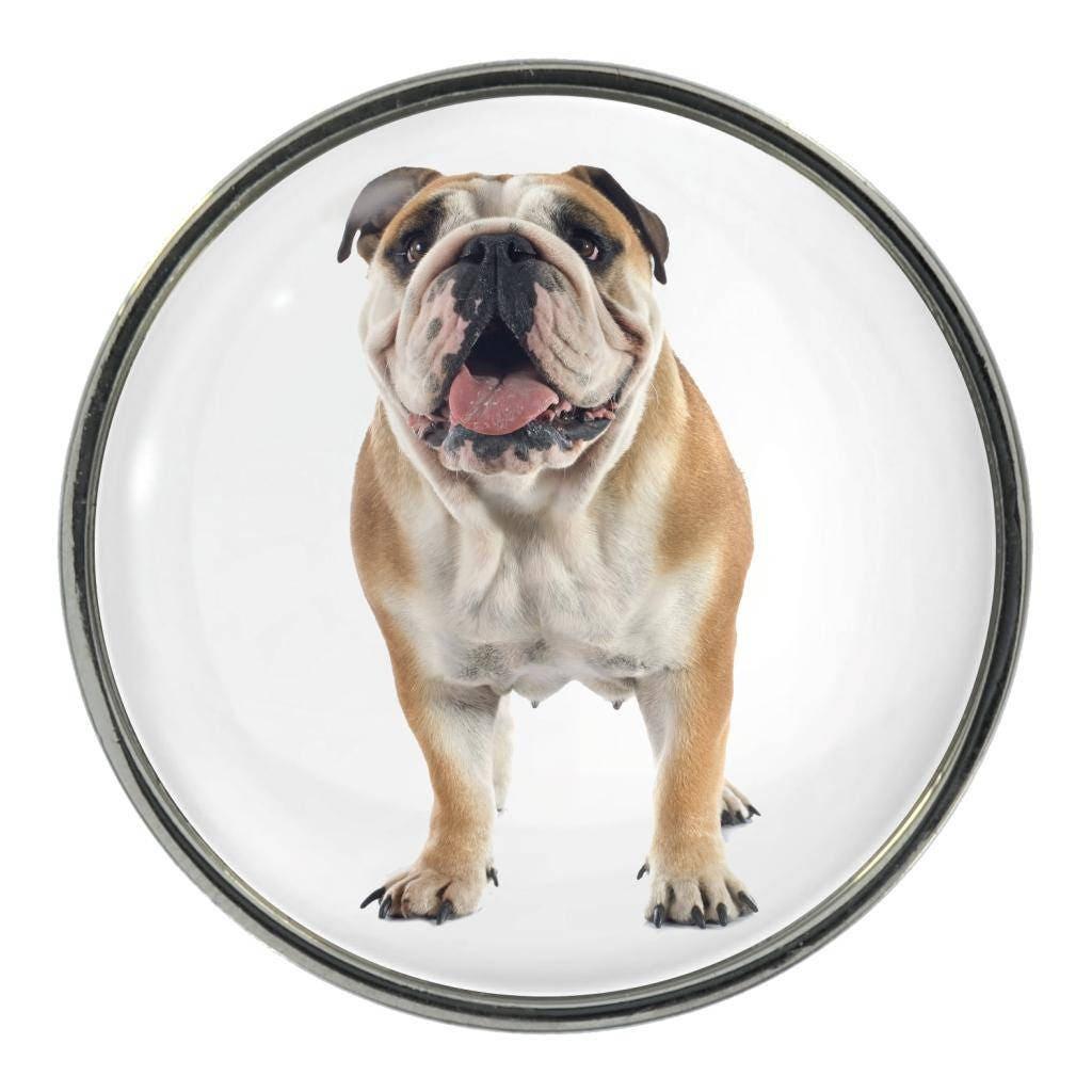 English Bulldog Image On Metal Pin Badge