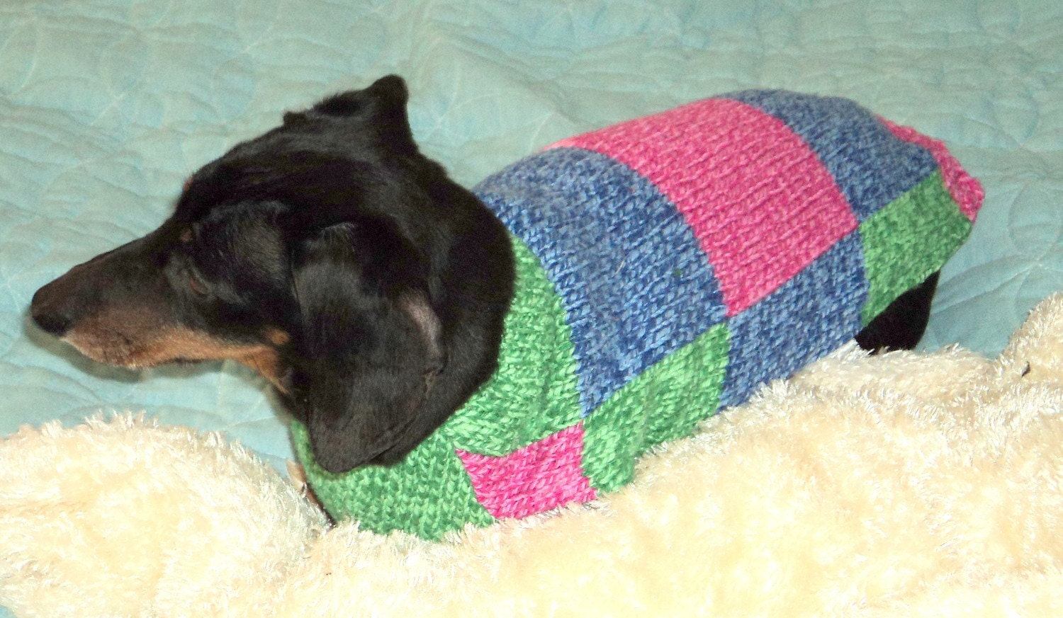 Knitting Patterns For Dachshund Dog Sweaters : Dachshund small dog sweater jumper in a knit by WarmWeenies