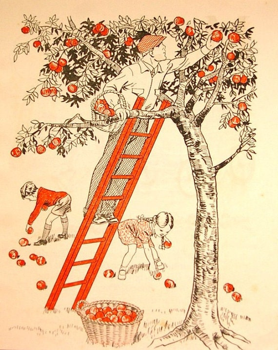 Picking Apples Vintage Print Childrens Book page Retro Red Black White
