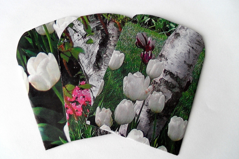 Spring Garden - Tulips and Birches - Handmade Envelopes