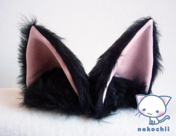 Cat Ear Pony Tail