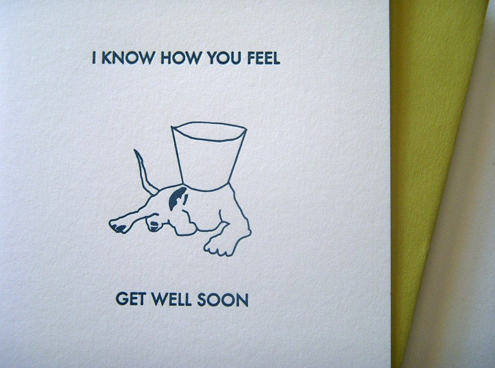 Get Well Soon Dog and Cone Collar