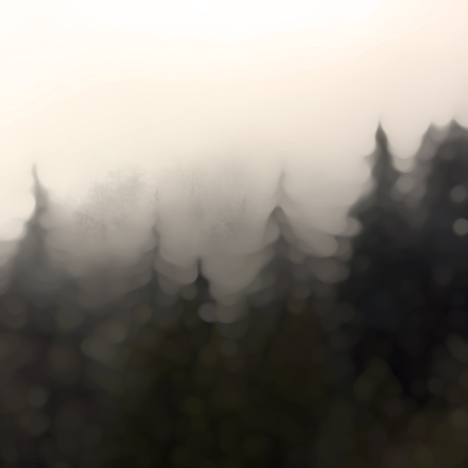 Assuage : Photographic Print, of rustic mountainous forest east of Seattle WA, softly blurred for a warm, smokey, romantic and dreamy feel. - BlueAlgaeCreative