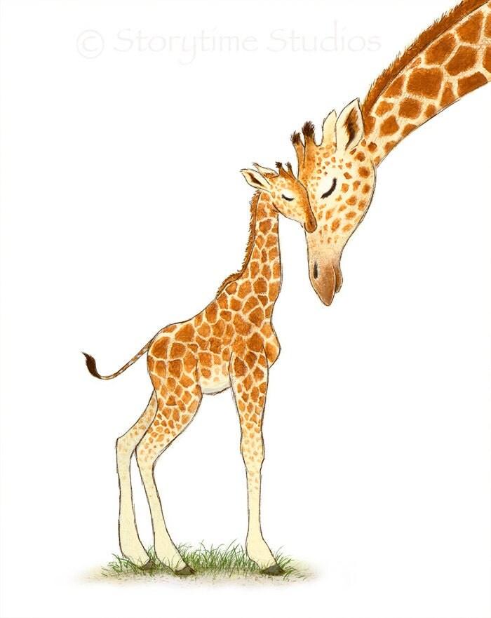 How the giraffe got its long neck  Daily Mail Online