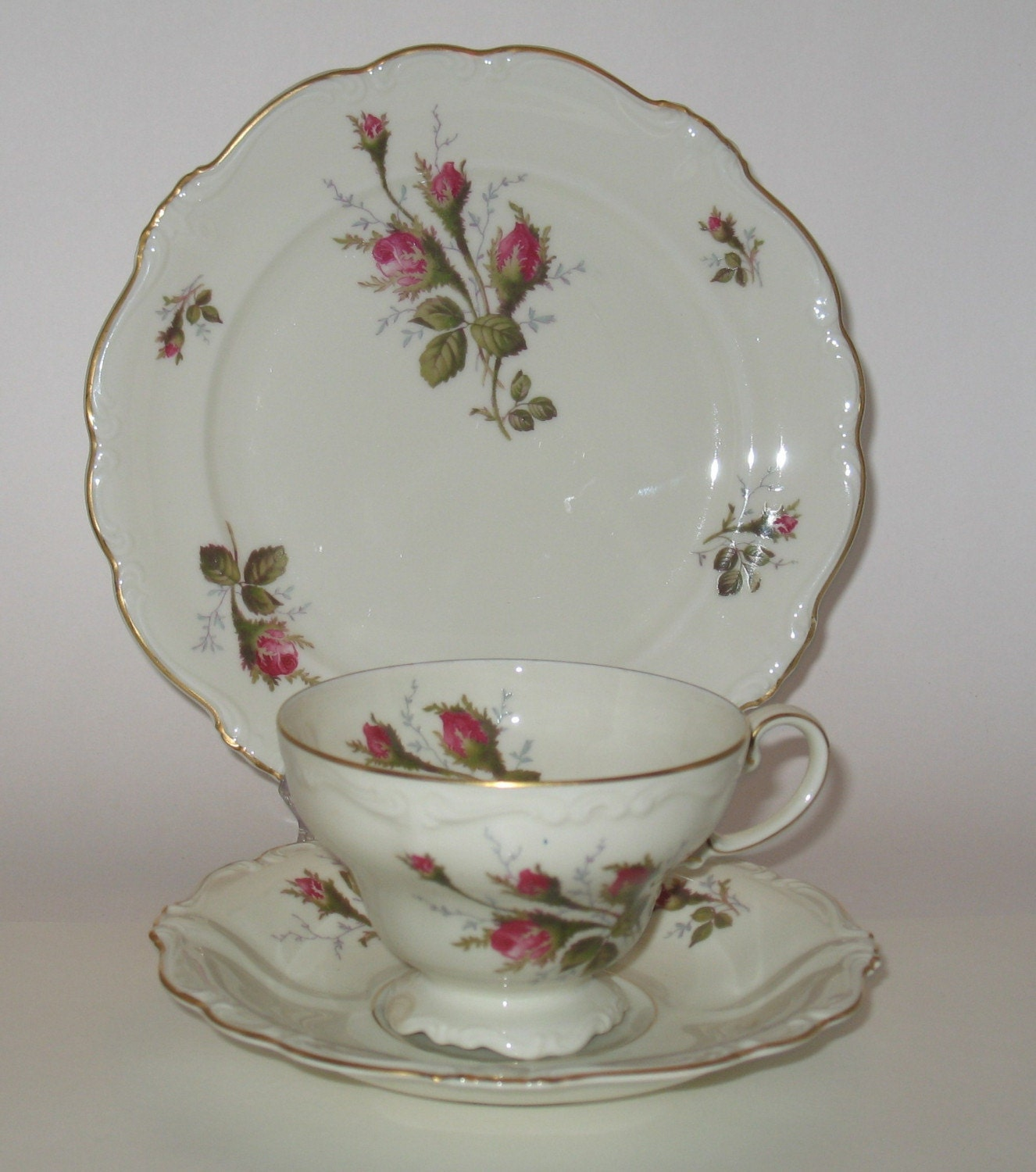 Moss Rose Vintage Tea Set By Rosenthal China By